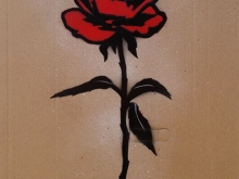 RED ROSE on CB